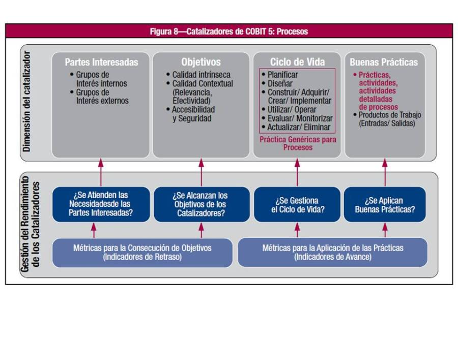 proceso-catalizadores
